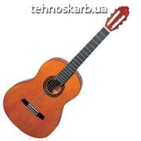 Гитара Valencia cg 160