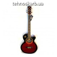 Гитара Phil Pro другое