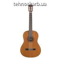 Гітара Tenson1 d1 dreadnought natural