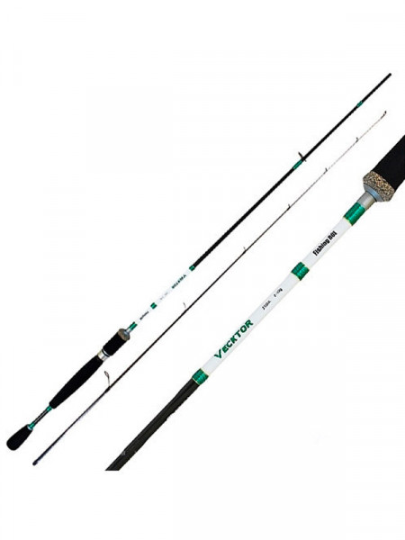 Спінінг Fishing Roi vecktor 2.1m 2-10g