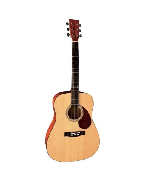 Гітара Vgs d-1 700