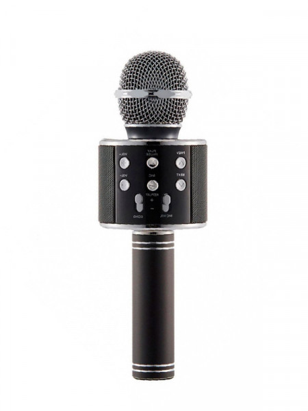 Микрофон Wster ws-858