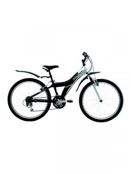 Велосипед Giant mtx 250